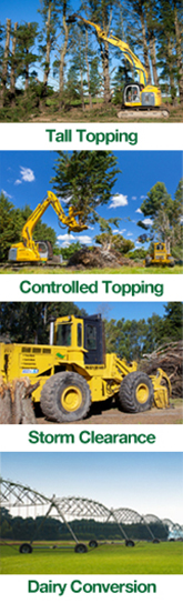 tree-topping-trimming-services